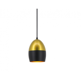 Zwart en Goud hangLamp