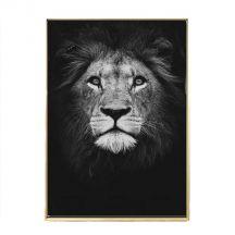 Zwart-wit Posters van wilde dieren
