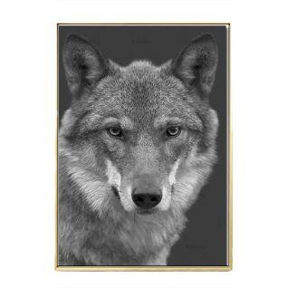 Zwarte en witte Posters met wilde dieren